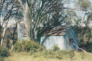 Photo Patty Purves. Patons Hut Easter 1996