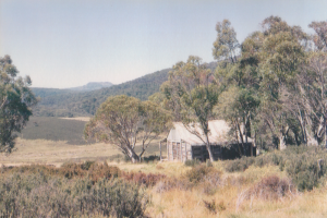 Photo Sue Davies. View of Mt Jagungal from Wheelers Hut March 1994.