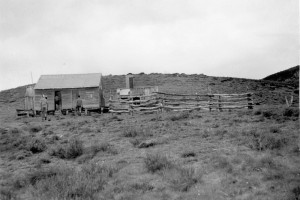 Grey Mare Hut with yards, this may not be the current building, 1947; Peter Woolley Collection.