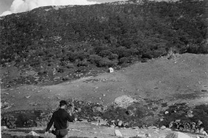 Pounds Creek Hut, from the slope opposite, 1947; Peter Woolley Collection.