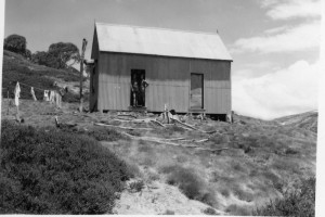 Pounds Creek Hut, currently the sleeping quarters of Illawong Lodge, 1947; Peter Woolley Collection.