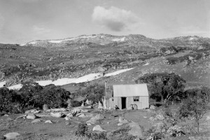 Tin Hut on the Brassy Range 1947; Peter Woolley Collection.