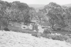 Happy Jacks Hut 1972 Reet Vallack Collection