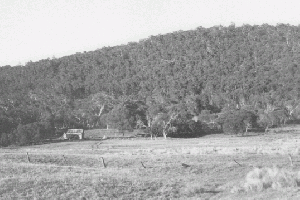 Harris Hut site 1972  Reet Vallack Collection