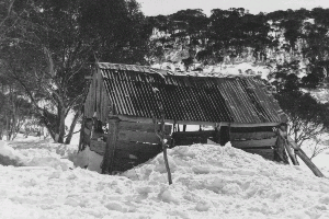 Teddys Hut in poor condition. Year unknown