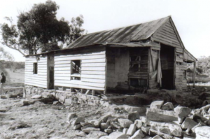 Westermans Hut before restoration, Maurice Sexton?, 1992.