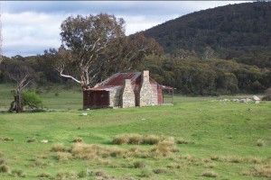 Westermans Hut, J. Morrow, 1992.