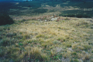 Original site of Wheelers Hut, above Toolong Diggings, Unknown 2002.
